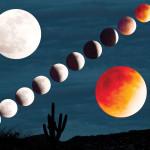 April 2014 Lunar Eclipse by Richard Spitzer
