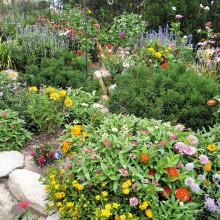 The Grabell garden