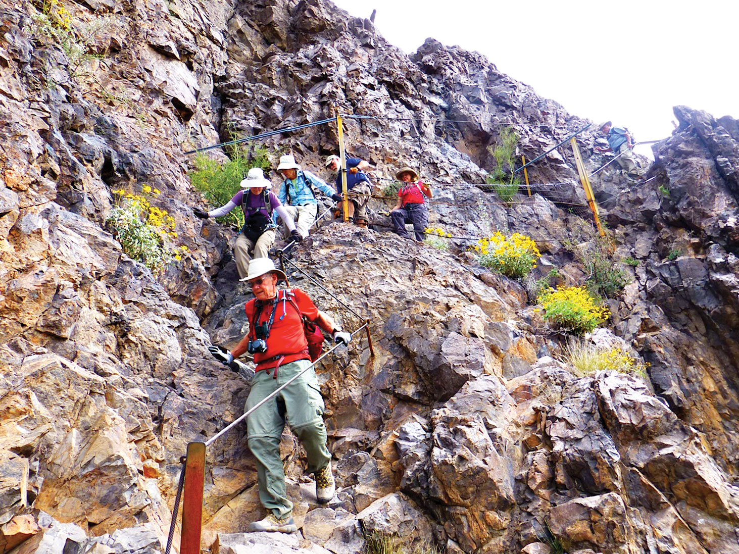 The Picacho Peak Loop was hiked to view the traditional display of Mexican poppies, lupine and globemallow below Picacho Peak. The hike to the top of the peak was an adventure as shown in the accompanying photo. Hikers were Cheryl Werstler, Karen Cusano, Anne Stanley, Harry Good, Jeff Traft, Neil Christensen and Elisabeth Wheeler.