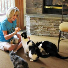 Adopted cats Mesquite, Callie and Barney not only love lining up for their treats but also support pet rescue.