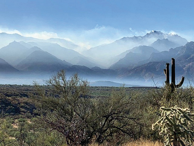 The Catalinas on fire; smoke fills the air (Photo by Elissa Cochran)