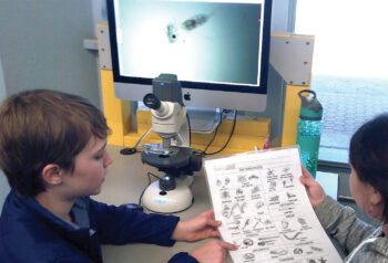Students from Coronado K-8 who attended the Catalina Island Marine Institute trip in February 2020 were able to snorkel and visit the plankton, shark, and invertebrate labs.