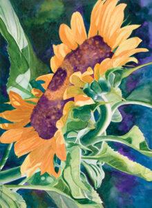 Sunflower by Renee Pearson